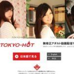 Tokyo-Hot Toilet