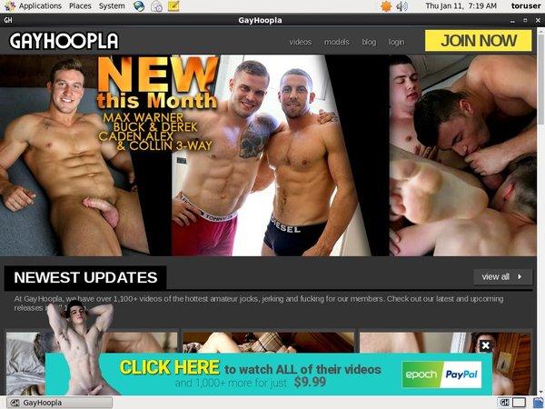 [Image: Free-Gayhoopla-Login-Accounts.jpg]